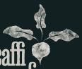 Caffi Cynefin Brand